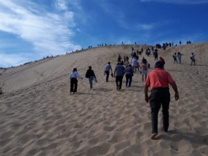 From singing to sand dunes!